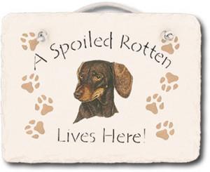dachshund spoiled rotten 24 95 beagle spoiled rotten 24 95 golden