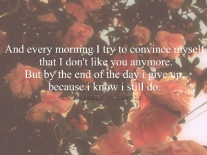 Every+morning+I+try+to+convince+myself+that+I+don't+like+you+anymore ...