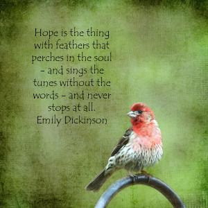 Birds-Quotes-44.jpg