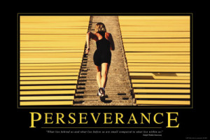 Perseverance is the hard work you do after you get tired of doing the ...