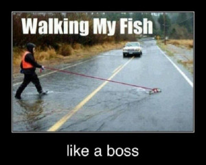 fish walking funny caption picture share this funny caption pic on ...
