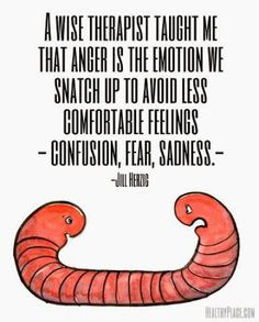 Anger = confusion, fear, sadness More