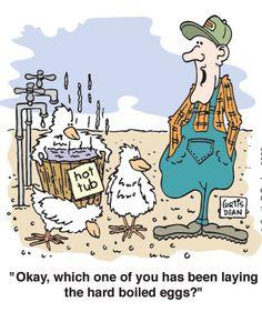 animated chicken farmer | Farm Humour - Wilde-Wind Farms More