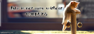 So Cute Cat Facebook Cover Photo With Quote