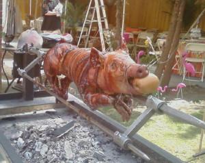 Pig Roast Pig roast