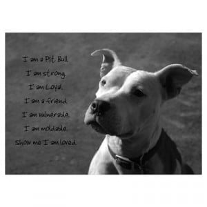 Can Tell My pitty anything....and He wont think im crazy