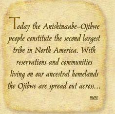 Ojibwe: About Anishinaabe More