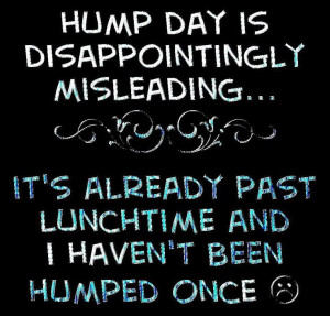 Hump Day quotes quote funny quotes days of the week humor wednesday ...