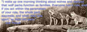 Lonely Wolf Quotes Wolf Quote Profile Facebook