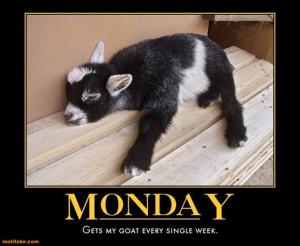 BLOG - Funny I Hate Mondays Pics
