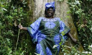 wangari muta maathai nació el 1 de abril de 1940 en nyeri kenia ...