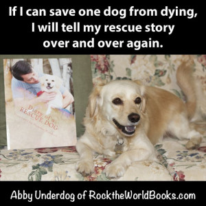 Diary Of A Rescue Dog
