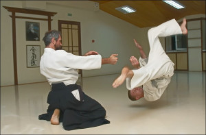 Funny Karate (41)
