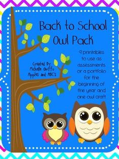 Back to School Owl Theme: 9 assessments for the first week of Kinder ...