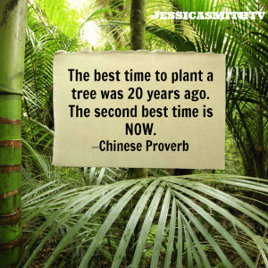 The best time to plant a tree was 20 years ago. The second best time ...