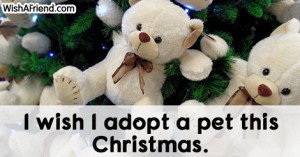 wish I adopt a pet, Christmas Thoughts