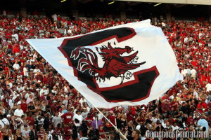 Gamecock Flag Picture