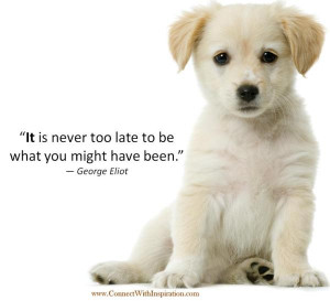 Dog Quotes About Life