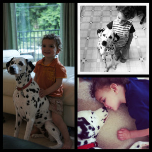 Boy And His Dog (Quotable Bits #27)