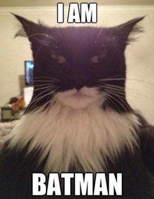 am batman - Funny pictures