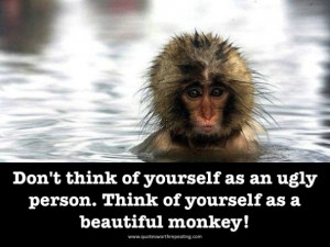 Here are some funny monkey pics.....