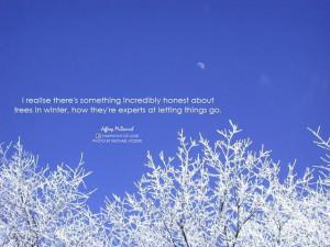Beautiful winter!