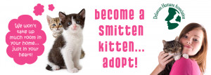 Stop by and get smitten with a kitten or two at their special all ...