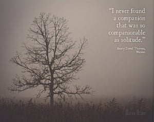 Tree in Fog Photograph | Solitude W alden Quote Henry David Thoreau ...