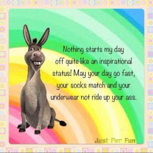 Status, Funny Shit, Day Off, Start, Funny Staff, Donkeys, Funny ...