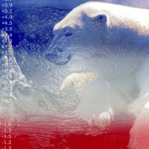 Polar Bear Quotes