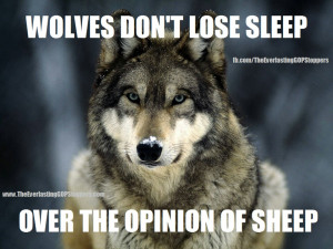 Wolf and Sheep Quotes