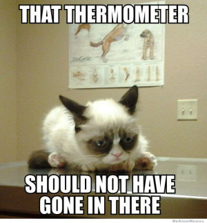 grumpy-cat-goes-to-the-vet