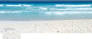 About: Facebook cover with picture of white sand beach