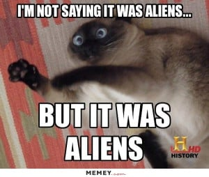 funny alien cat