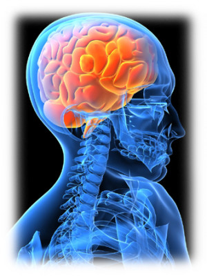 Neurology Clinic evaluates patients with a wide variety of neurologic ...