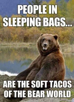 People in sleeping bags – bear meme