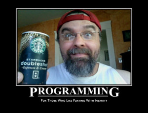 Programming, for those who like flirting with insanity
