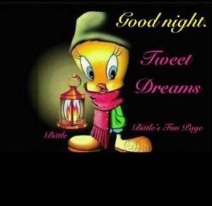 Goodnight Tweety
