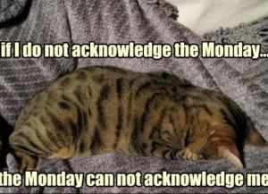 ... Hate Mondays Wallpaper , I Hate Mondays Cat , I Hate Mondays Quotes