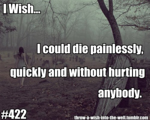 Wish... I could Die painlessly, quickly and without hurting anybody.