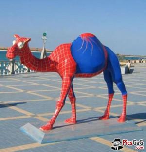 ... pics funny spiderman spiderman funny photo spiderman funny memes funny