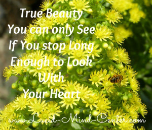 Quotes About Flowers And Happiness Quotes about beauty and