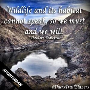 nature #wildlife #habitat #mountains #thurstrailblazers