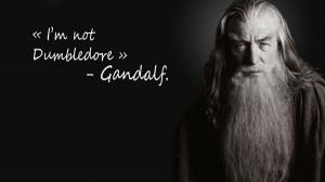 rings harry potter trolling ian mckellen magician dumbledore Wallpaper