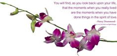 Spirit of love orchid quote via Light for Life on Facebook at www ...