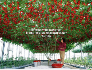 ... quotes. More gardening quotes to inspire! http://www.tomatodirt.com
