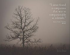 ... Quotes | Tree in Fog Photograph | Solitude W alden Quote Henry David