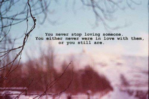 You never stop loving someone, You either never were in love with them ...