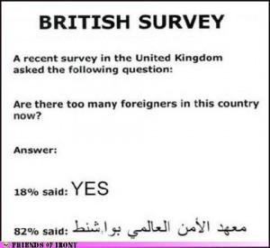 Funny Political Cartoons and Memes-british-survey.jpg