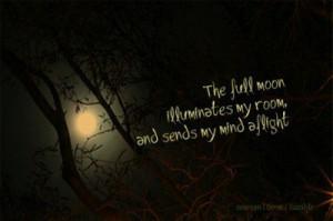the full moon illuminates my room